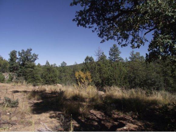 5549 S. Blue Jay Rd., Prescott, AZ 86303 Photo 8