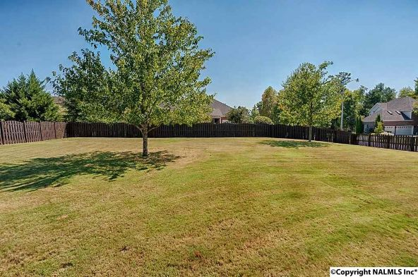 113 Two Horse Trail, Harvest, AL 35749 Photo 12