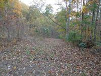 Home for sale: 336 Lacey Fern Ridge, Sylva, NC 28779