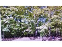 Home for sale: 109 Greenwood Dr., Williamsburg, VA 23185