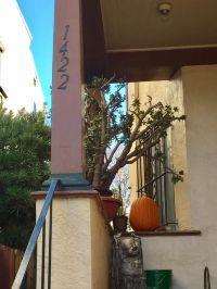 Home for sale: 1420-1422 Linden St., Oakland, CA 94607