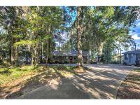 Home for sale: 679 Flintside Dr. S., Leslie, GA 31735