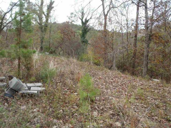 108 Buckthorn, Mountain Pine, AR 71956 Photo 13