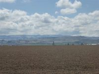 Home for sale: 40ac Tbd Southside Rd., Homedale, ID 83628