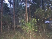 Home for sale: 332 N. Squirrel Ave., Wewahitchka, FL 32465