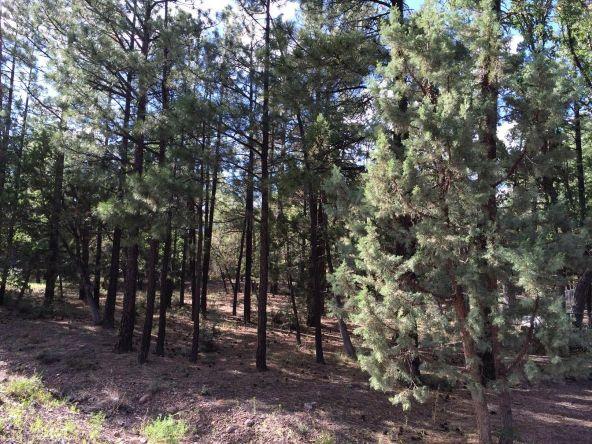 4826 Blue Spruce Ln., Lakeside, AZ 85929 Photo 2