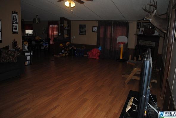 41 Norton Rd., Sylacauga, AL 35151 Photo 46
