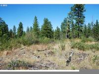 Home for sale: Pine Creek Rd. 2, Bickleton, WA 99322