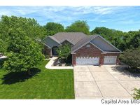 Home for sale: 9628 Wildwood Ln., Chatham, IL 62629