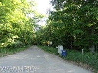 Home for sale: 505 96th St., Newaygo, MI 49337