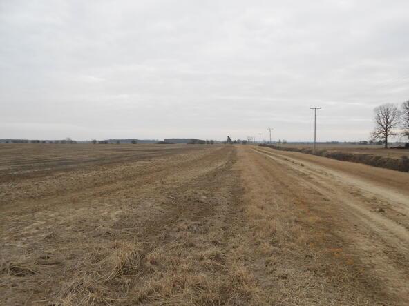 402.93 Acres Long Creek, Waldenburg, AR 72475 Photo 14