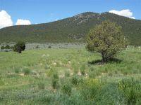 Home for sale: 2674 Cornelio Cisneros Rd., Cerro, NM 87519