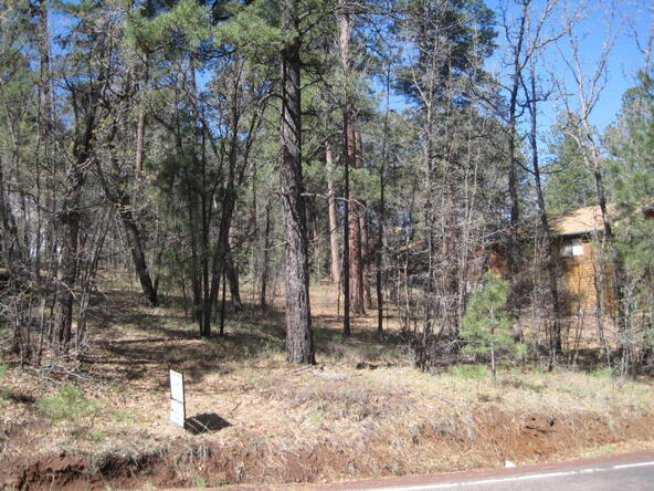 6645 Country Club, Pinetop, AZ 85935 Photo 4
