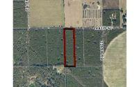 Home for sale: Tbd 144th St., Live Oak, FL 32060