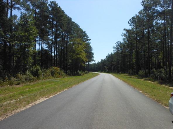3495 Preserve Ct., Sumter, SC 29150 Photo 8