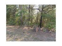 Home for sale: Cr-656h, Webster, FL 33597
