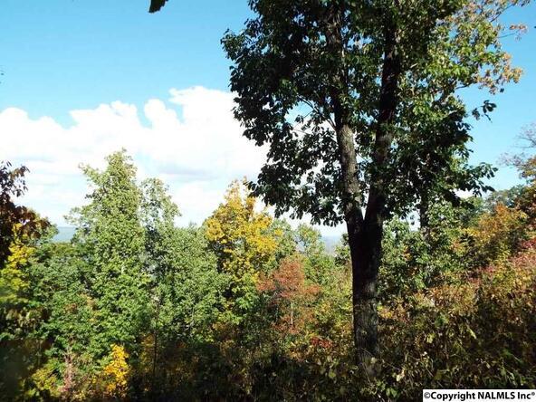 10 S. County Rd. 89, Mentone, AL 35984 Photo 17