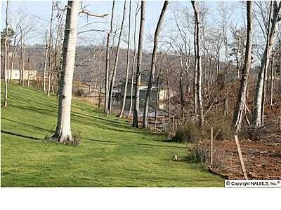 Buck Island Dr., Guntersville, AL 35976 Photo 2
