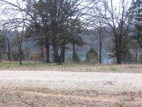 Home for sale: Plumrick Lot #6 Plumrick Rd., Eagle Rock, MO 65641