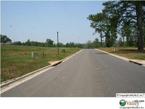 101 Lake Creek Dr., Guntersville, AL 35976 Photo 10