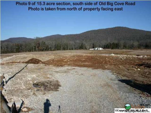 5703 U S. Hwy. 431, Brownsboro, AL 35741 Photo 12