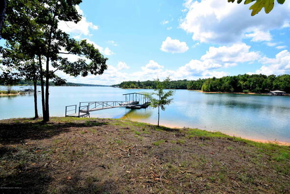 75,76,77 Stoney Pointe Landing, Double Springs, AL 35553 Photo 4