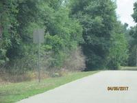 Home for sale: 2573 N. Woodham Rd., Avon Park, FL 33825