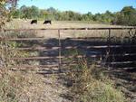 2 Hwy. 121, Bonham, TX 75418 Photo 1