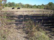 Home for sale: 2 Hwy. 121, Bonham, TX 75418