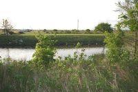 Home for sale: 13-14 Cr 868, Brazoria, TX 77422