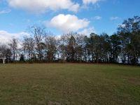 Home for sale: Lot 19 Highland Dr., Abbeville, AL 36310