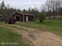 Home for sale: 3972 W. Hansen Rd., Baldwin, MI 49304