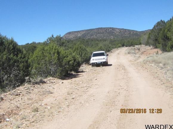 33307 W. El Caballo Rd., Seligman, AZ 86337 Photo 20