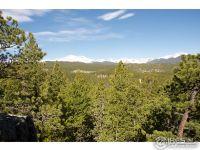 Home for sale: 0 Pine Cone Cir., Ward, CO 80481