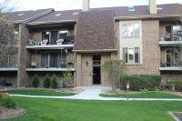 Home for sale: 9131 del Prado Dr., Palos Hills, IL 60465