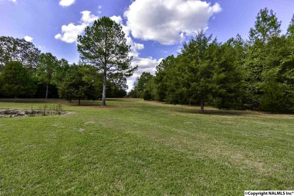 194 County Rd. 380, Decatur, AL 35603 Photo 13