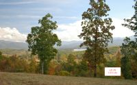 Home for sale: Lt29 Jack Groves Ln., Hayesville, NC 28904