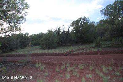 957 Westwood Ranch, Seligman, AZ 86337 Photo 16