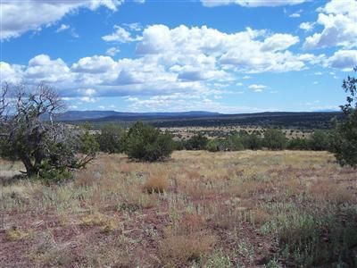 204 Juniperwood Rnch Un 3 Lot 204, Ash Fork, AZ 86320 Photo 5