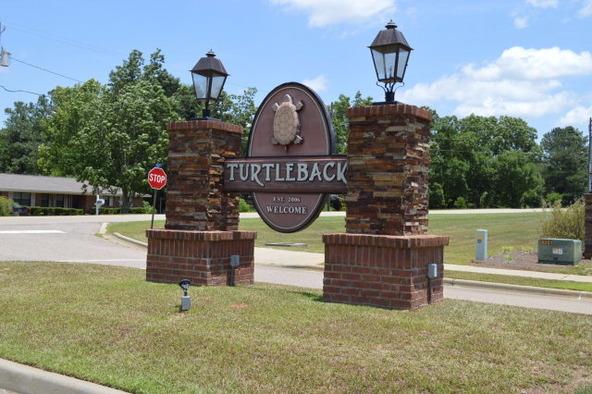 210 Turtleback Trail, Enterprise, AL 36330 Photo 3