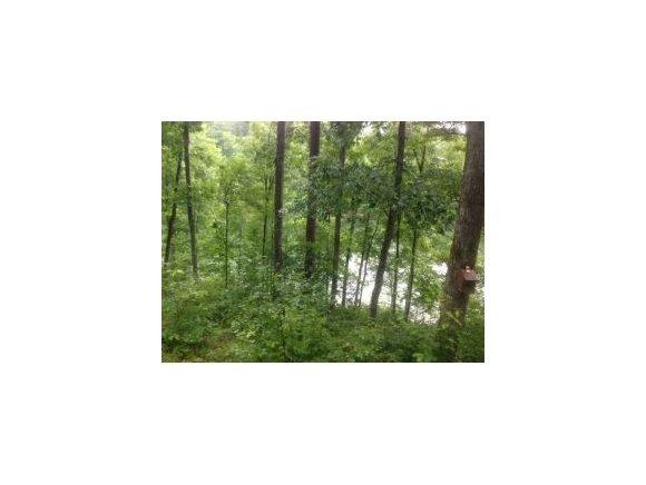 60 Co Rd. 309, Crane Hill, AL 35053 Photo 1