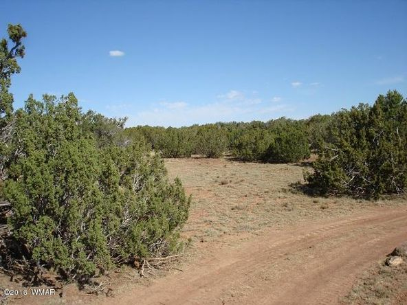 9073 Cibola Dr., White Mountain Lake, AZ 85912 Photo 2