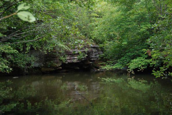 70 County 944 Rd., Mentone, AL 35984 Photo 76