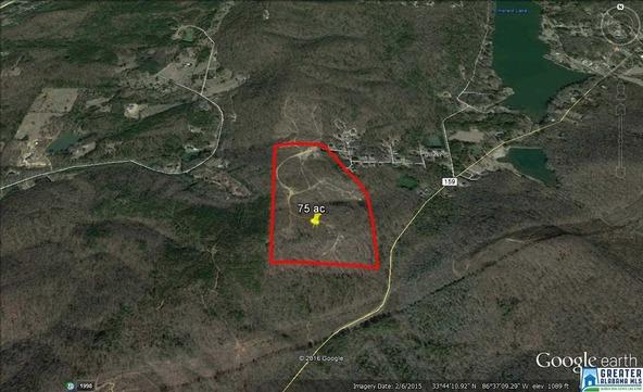 7820 Cedar Mountain Rd., Pinson, AL 35126 Photo 1