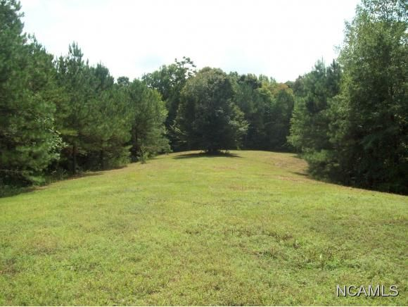 477 Co Rd. 1731, Holly Pond, AL 35083 Photo 29
