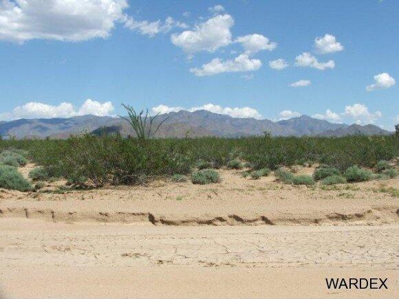 3181 Butch Cassidy Rd., Yucca, AZ 86438 Photo 14