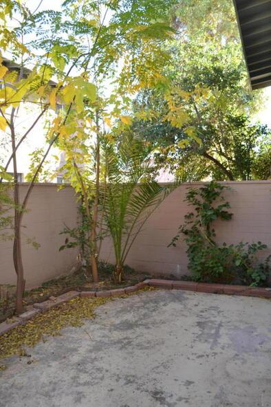 903 N. Desert, Tucson, AZ 85711 Photo 11