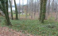 Home for sale: Tr 2 Mockingbird Ln., Hiawassee, GA 30546