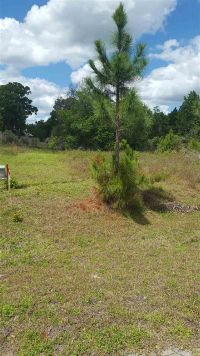 Home for sale: 16432 N.W. 174th Dr., Alachua, FL 32615