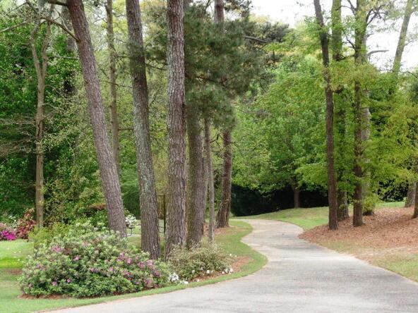 17b Shady Grove Trail, Dothan, AL 36303 Photo 8